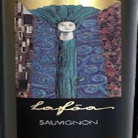 Il Vino del giorno: Sauvignon Lafòa 2007