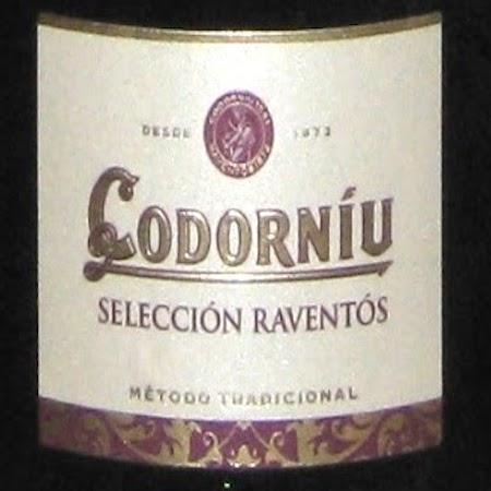 Il Vino del giorno: Selección Raventós Brut